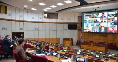 Ministro explicó sobre fondos del Fogapy a Comisión del Senado