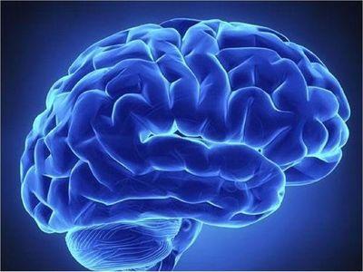 Una nueva forma de transportar eficazmente fármacos al cerebro