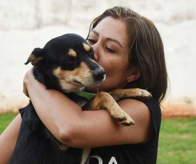 Animaleros celebran aprobación del pedido de informe sobre gestión del director de Defensa Animal