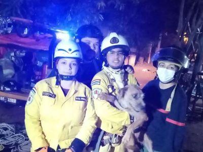Perro es rescatado de un pozo por bomberos de Ypacaraí e Itauguá