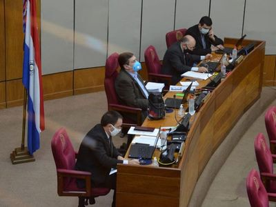 Senadores exhortan a la ANDE a cancelar últimas tres facturas