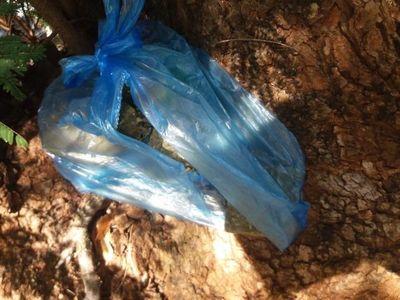 Hallan paquete de marihuana cerca de la Dirección de Policía de Amambay