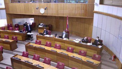 Senadores cuestionaron ausencia de Abdo y falta de transparencia en uso de los fondos de emergencia