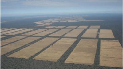 Desoladora vista aérea del Chaco marcada por la deforestación