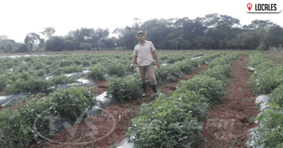 Horticultura: una interesante opción para los jóvenes agricultores
