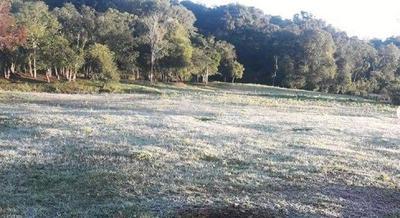 Primeras heladas en algunas zonas del país – Prensa 5