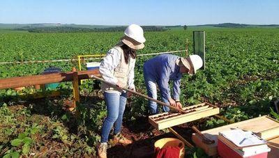 ¿Sabías que en Paraguay hay actividad minera? (e invierten millones)