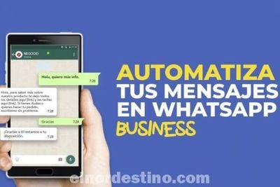 Ahora la popular aplicación Whatsapp se puede programar para que responda automáticamente mensajes por ti