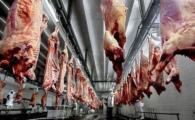 Chile y Rusia representan el 57,5% de exportaciones de carne bovina