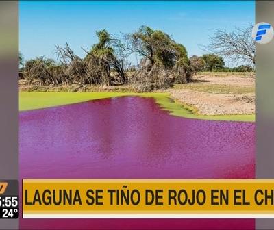 Extraño fenómeno tiñó de rojo una laguna del Chaco
