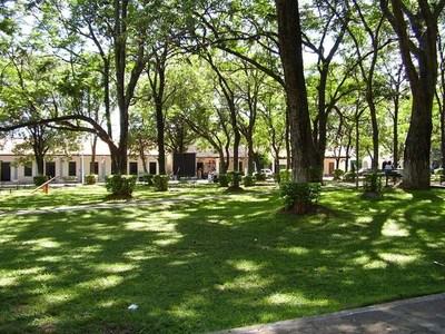 Inicio de invierno con ambiente cálido a caluroso. Veranillo de San Juan se extendería hasta el miércoles