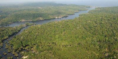 Indígenas se adentran en la selva amazónica por temor al covid-19