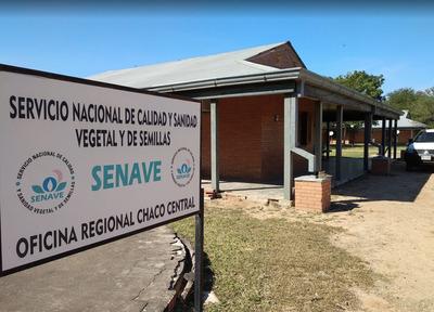 Monitoreos de SENAVE continúan en el Chaco pese a pandemia