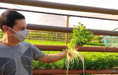 Joven sale adelante mediante el cultivo hidropónico en Pilar