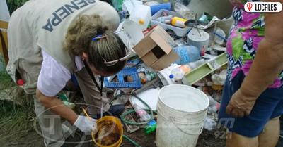 Dengue: se debe continuar con la eliminación de los criaderos de mosquitos