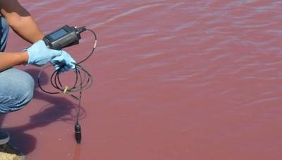 HOY / Técnicos del Ministerio del Ambiente estudian tajamar que se tiñó de rojo