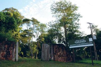 Presentan proyecto de reforestación para Caazapá