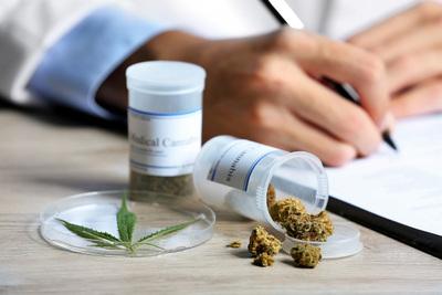 La ONU relaciona la legalización del cannabis con un aumento del consumo