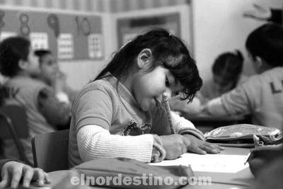 Se decidió por decreto del Poder Ejecutivo que las clases presenciales ya no volverán este año en escuelas y colegios
