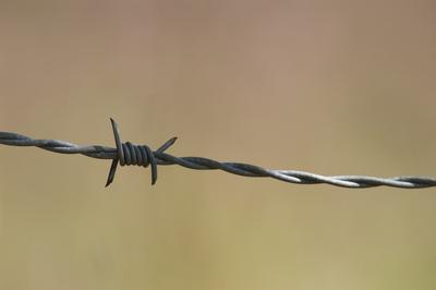 ¡Un alambrado con tensión eléctrica en tu barrio no es normal! Denunciá