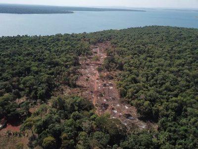 Itaipú constató la tala de bosques nativos en la zona de Puerto Indio