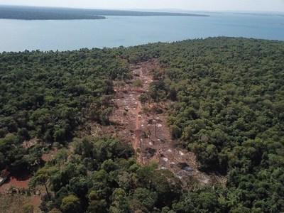 """Itaipú denuncia tala de bosques nativos y anuncian acciones para proteger la """"soberanía forestal"""""""