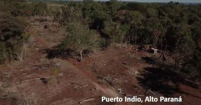Delitos ambientales no cesan en reservas de Itaipu