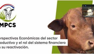 » Rol del sistema financiero en reactivación productiva