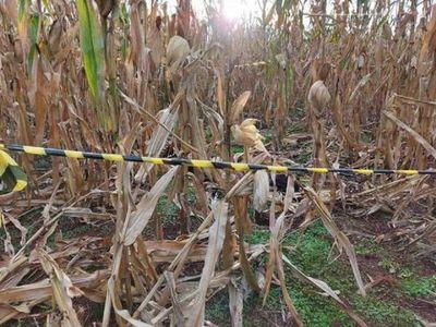 Niña indígena muere tras ser víctima de violación en Itapúa