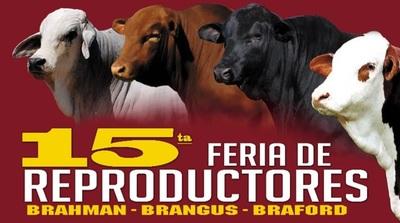 """Ferusa vende hoy lunes """"genética de calidad"""" en feria anual de Ganadera Alborada"""