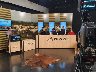 Piemonte comercializó el 98,2% de la oferta de invernada
