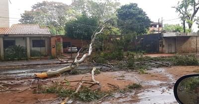 Fuerte temporal causa destrozos en Central y varios puntos del interior
