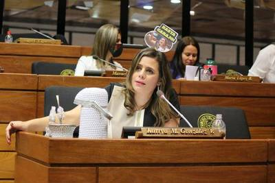 """Diputada sostiene que informe de gestión fue """"desdibujado y sin sentido político"""""""