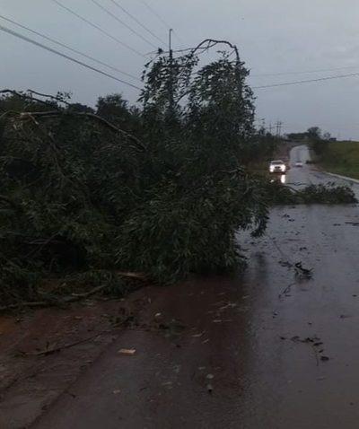 Ande seguía ayer reponiendo energía a unos 5.000 usuarios sin servicio en Alto Paraná – Diario TNPRESS
