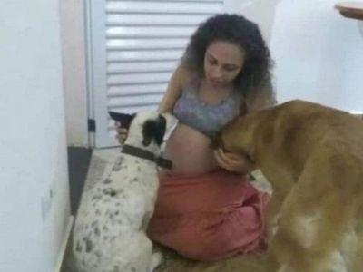 Brasil: Perro atacó y mató a gemelas recién nacidas