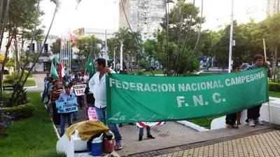 Federación Nacional Campesina donará más de 20 mil kilos de producción en conmemoración a su 29° aniversario