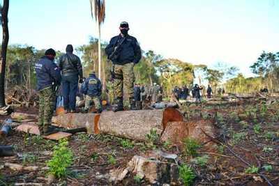 Jueza de Itakyry concede medidas alternativas a la prisión a imputados por deforestación