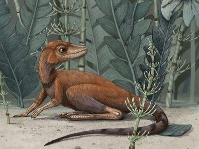 Estudio afirma que los dinosaurios podrían tener un origen diminuto