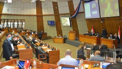 Diputados aprueban leyes a favor de profesionales de blanco