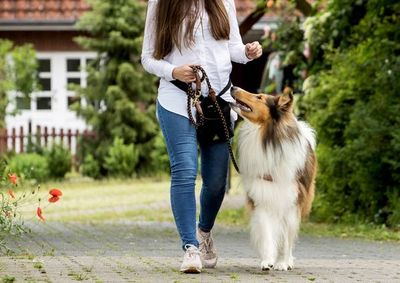 No es bueno tirar de la correa del perro al pasear
