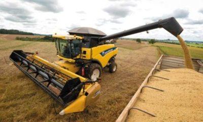 » Exportación agropecuaria repunta en junio y la caída se desacelera