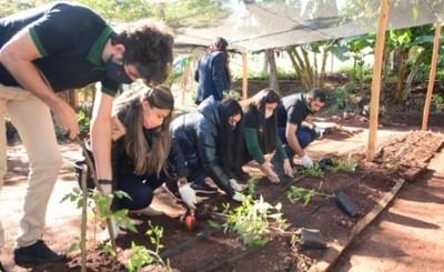 Vivero municipal se reactiva y prevén creación de huertas comunitarias