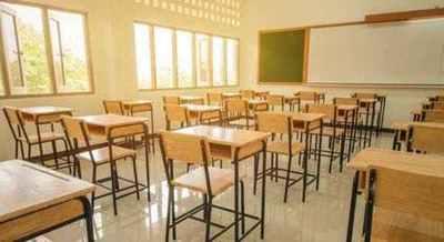 Senadores Plantean Subsidios Indirectos Para Colegios Privados