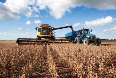 Buena cosecha agrícola mantiene estable la economía durante la pandemia