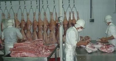 Producción porcina precisa de nuevos mercados internacionales