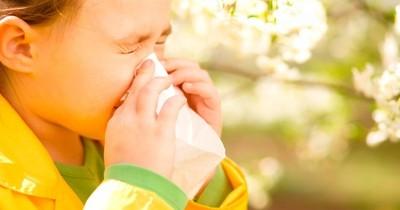 """""""Alergias al cambio de clima o la humedad no existen"""" en términos médicos, dice experto"""