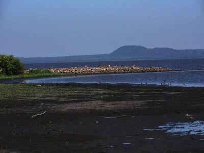 """Río Paraguay y lago Ypacaraí """"hermanados"""" por un drama: son depósitos de excrementos"""