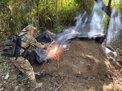 Senad incautó y destruyó más de 6 toneladas de marihuana en Pedro Juan Caballero