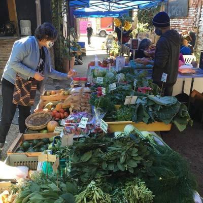 Propuesta fresca: Sigue la Feria Agroecológica en la Plaza Italia