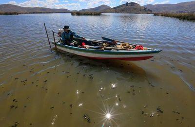 Varios países se unen para estudiar a la emblemática rana del lago Titicaca